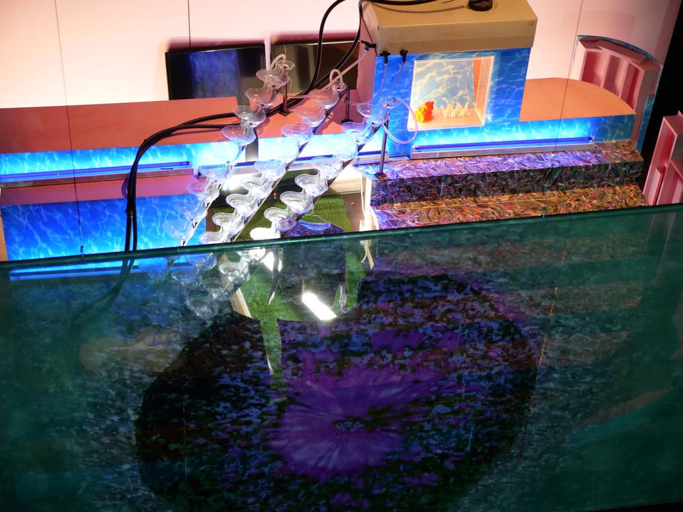 Pierre Pauze_installation view_sonic fluid, water memory, Mizumoto, qlf, Fresnoy