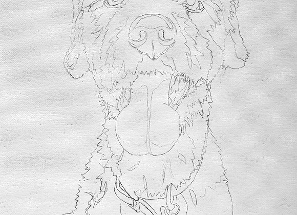 Pre-Sketched Pet Portrait Canvas