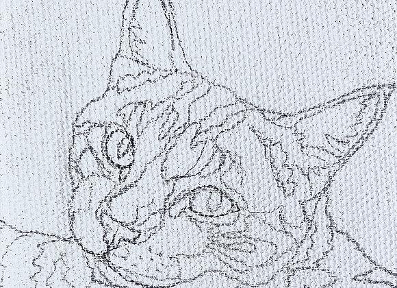 Pre-Sketched Pet Portrait Mini