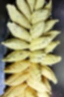 Capture d'écran 2019-02-11 à 17.56.32_mo