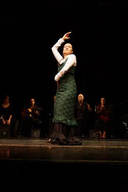 Internationales Theater 2014