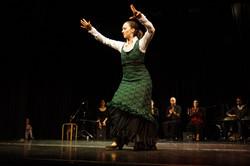 Internationales Theater Ffm 2014