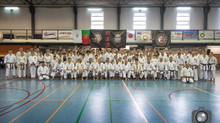 Goju Ryu Karate Do Seiwakai International Seminar Portugal