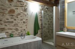 Baño principal 1