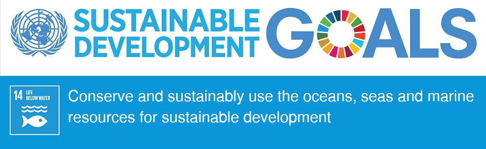 SDG14 banner