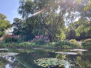Park Planten un Blomen in Hamburg