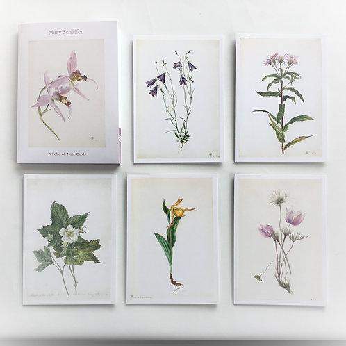Notecards, Mary Schäffer Botanicals