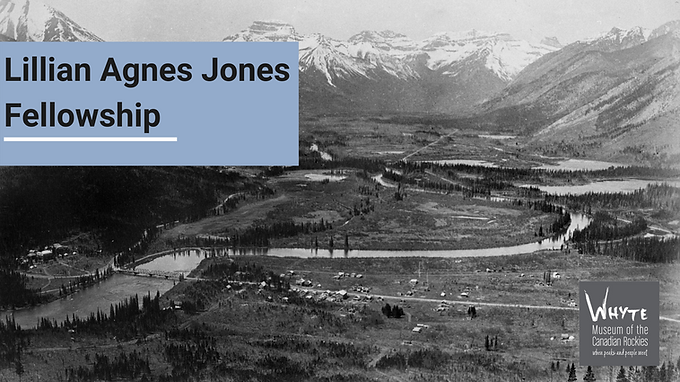 Lillian Agnes Jones Fellowship