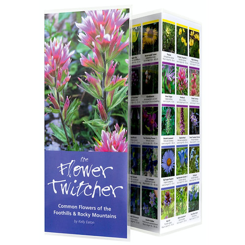 Pocket Guide, The Flower Twitcher