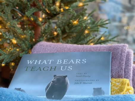 Gifts Galore — For the Nature Lover