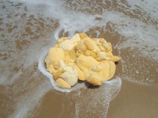 Afloat East Coast Beach Bum