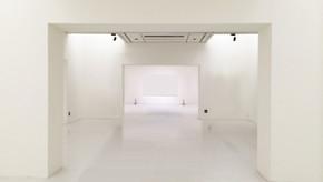 Galeria de arte: a visão de Guilherme Zawa