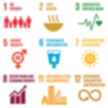 SDG website.png