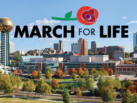 (Updated) 2021 March For Life Events