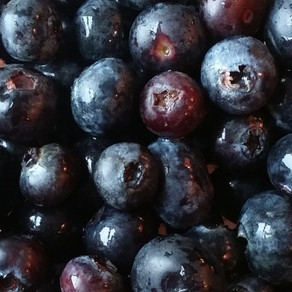 Meet the Ingredient: Blueberries