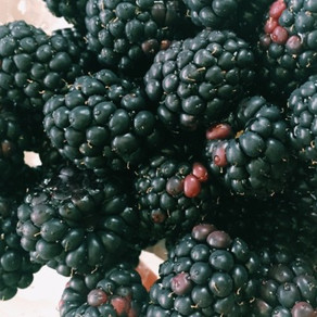 Meet The Ingredient: Blackberries
