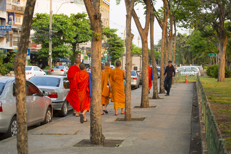 Буддизм навстречу