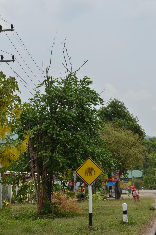 Знаки на дорогах Тая