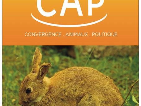 La Nuit Avec un Moustique rejoint C.A.P Convergence Animaux Politique