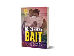 Brigs Ferry Bait.png