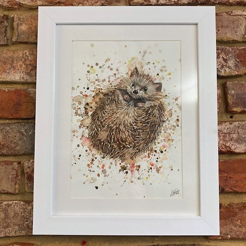 'Hedgy' By Megan Fearnley