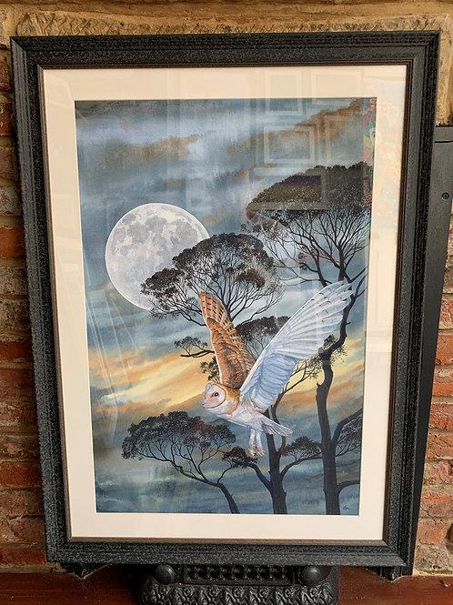 'Barn Owl  Moonlight Flight' By David Hume