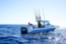 Cruise Craft 625 Explorer HardTop
