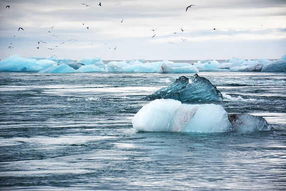 Ocean Risk Index