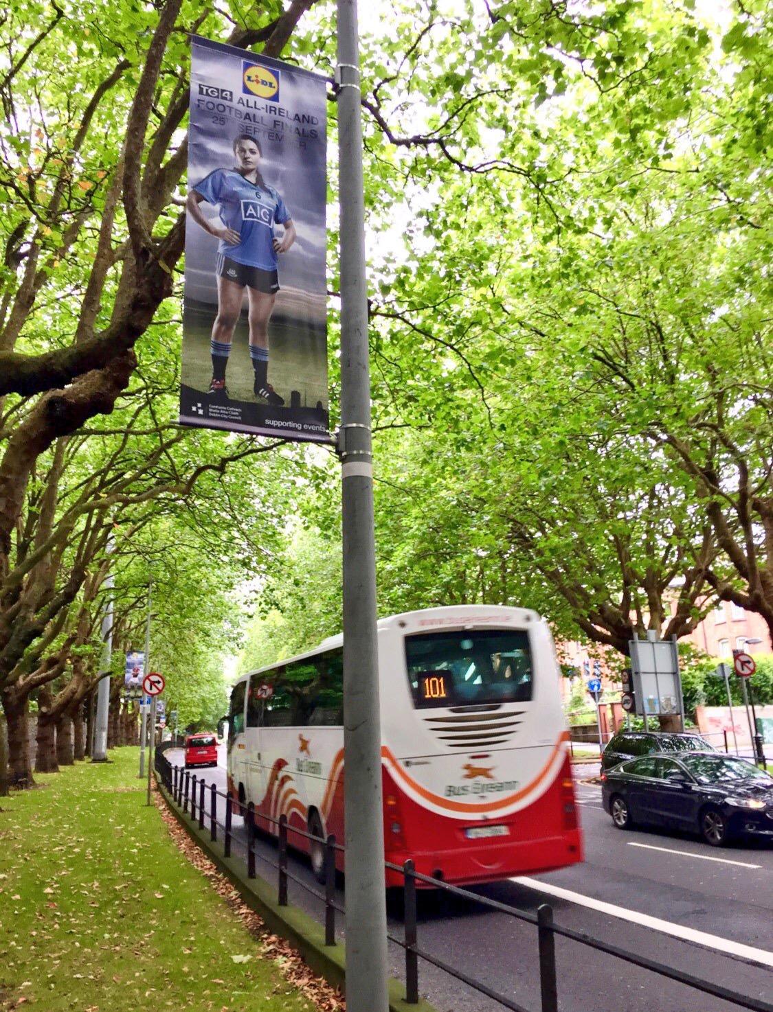 Dublin GAA Banners