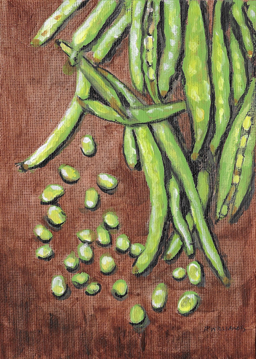 Green Peas in Pods Drawing