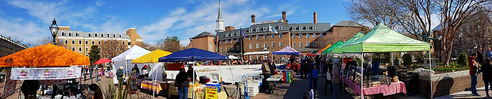 Old Town Alexandria Panoramic View