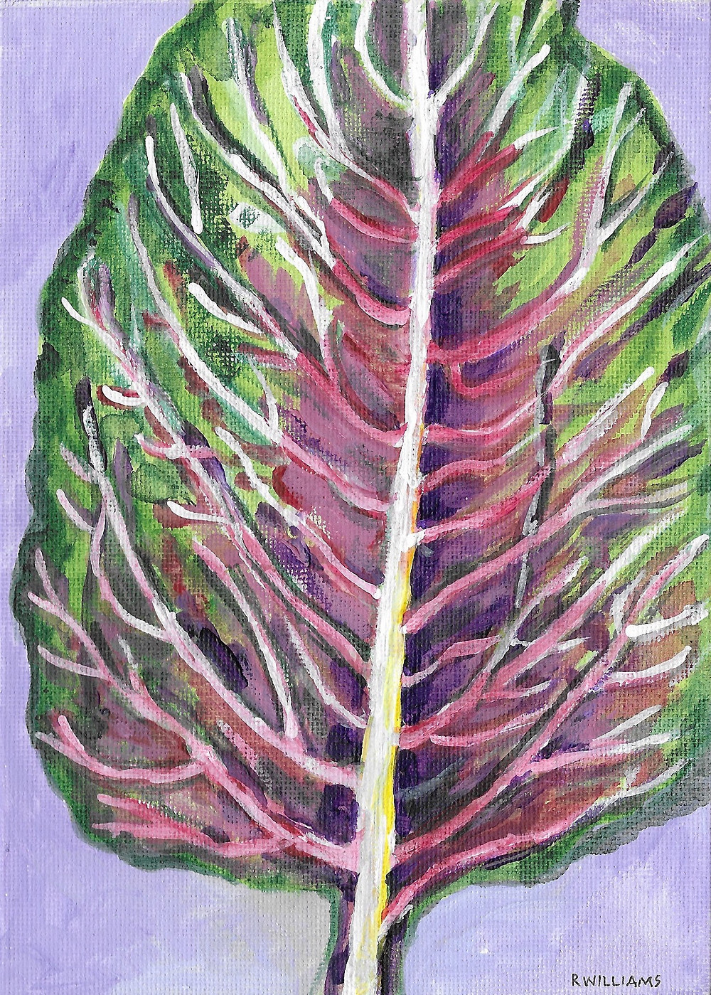Red Kale Leaf Drawing