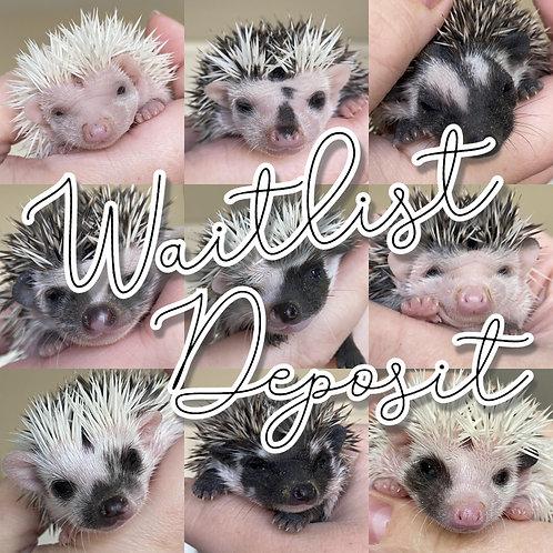 Waitlist Deposit