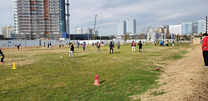 100_soccer.jpg