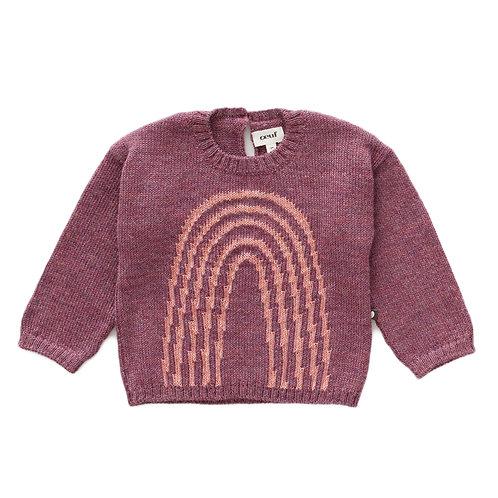 Alpaca Rainbow sweater