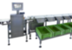 grader, sorting checkweigher, checkweigher
