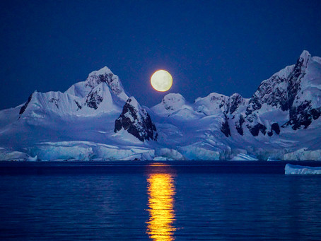 Why a trip to Antarctica           is worth it