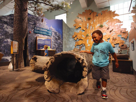 Fun San Diego Museums