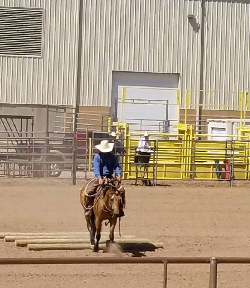 ranch riding 6