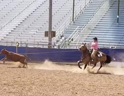 ranch riding 15