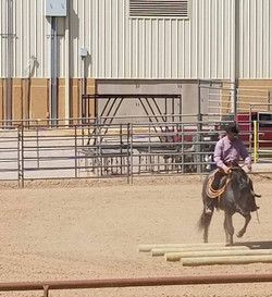 ranch riding 9