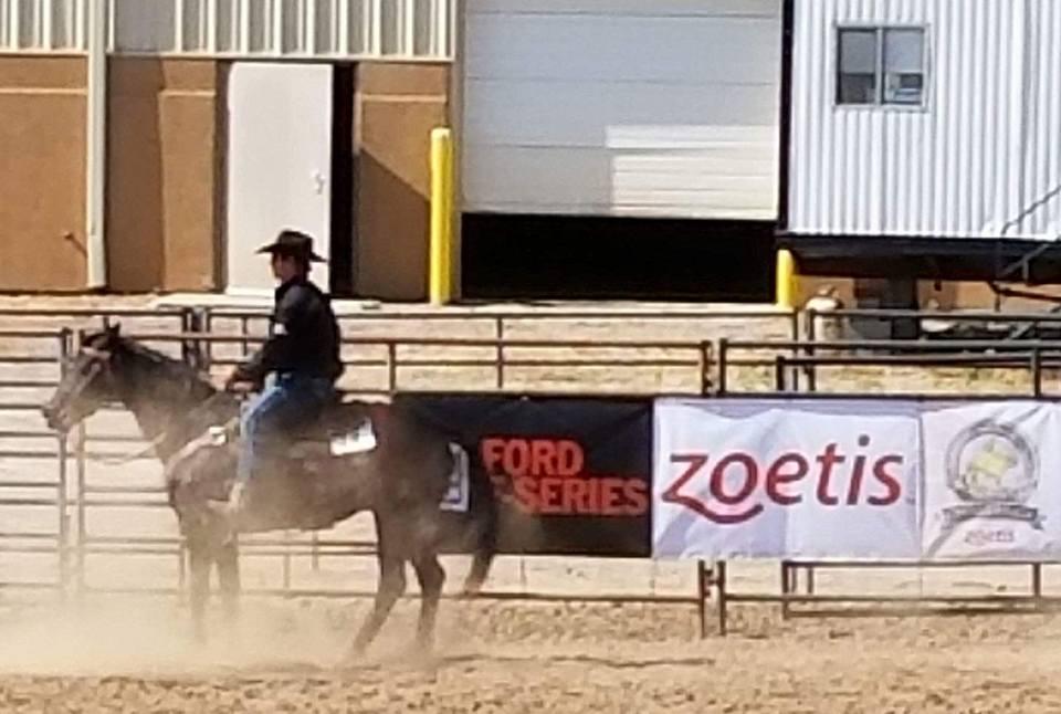 ranch riding 5