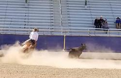 ranch riding 12
