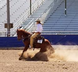 ranch riding 10