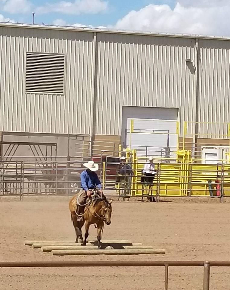 ranch riding 7