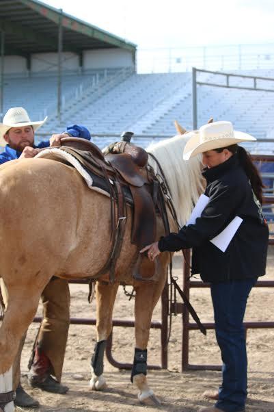ranch riding