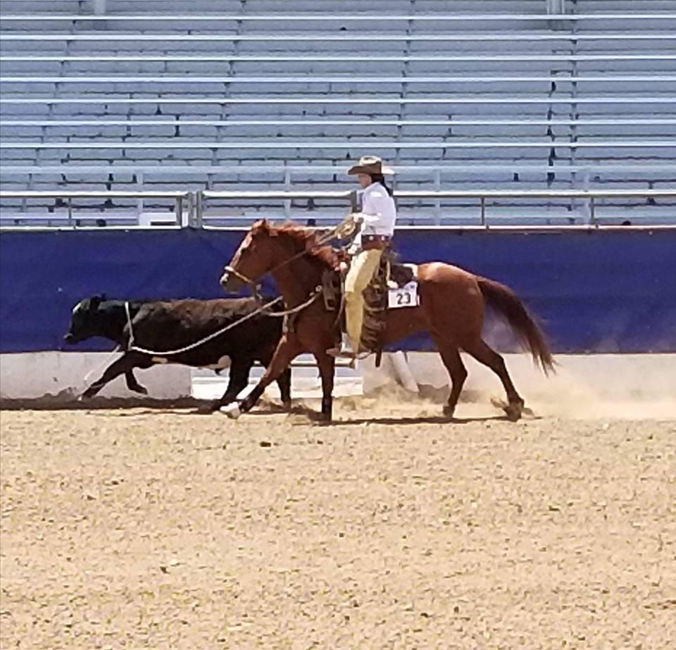 ranch riding 14