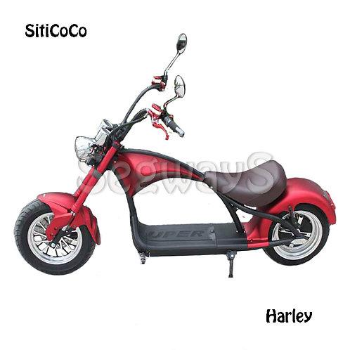 SitiCoCo Harley