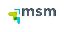 logo MSM 1 chico.jpg