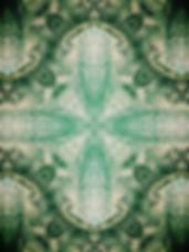 forest2_edited.jpg